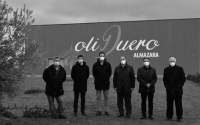 La Fundación Carlos Moro de Matarromera convierte hectáreas de olivar en litros de solidaridad